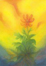 Atelier de peinture - Hélène Poncet - coloriste formatrice et enseignement slow art #Hauschka #Peinture #cours #techniquespeintes #couleurs