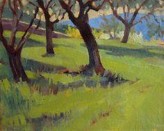 La Romita Olive Orchard- Plein air oil painting of olive trees in Umbria, Italy. Art for sale. By Jill Stefani Wagner  www.jillwagnerart.com