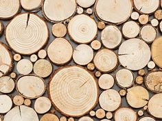 Panel dekoracyjny Wood Collection PURE