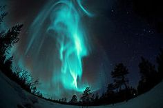 landscape trees night northern lights fish eye