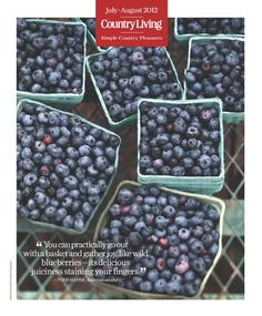 """""""You can practically go out with a basket and gather joy, like wild blueberries--its delicious juiciness staining your fingers."""" - Todd Hafer, American novelist Diabetic Recipes, Healthy Recipes, Great Recipes, Favorite Recipes, Good Food, Yummy Food, Country Living Magazine, Wild Blueberries, Fruit Salads"""