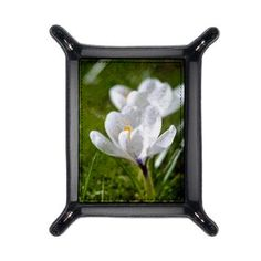White Crocus Travel Valet  Blooming white crocus flowers on green grass background, painting effect    $29.99