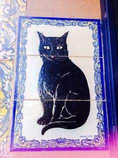 Lucky cat-Sevilla