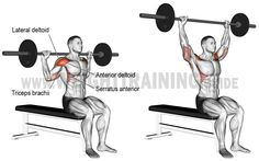 Behind-the-neck barbell overhead press exercise Fitness Workouts, Fitness Gym, Weight Training Workouts, Corps Fitness, Training Exercises, Kettlebell Training, Dumbbell Workout, At Home Workout Plan, At Home Workouts