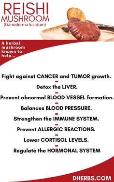 It is a wellknown truth that we can slim down much faster when we workout and there are some exercises that can make the process even faster healthylife is part of Cancer fighting foods - Natural Cancer Cures, Natural Cures, Natural Healing, Natural Foods, Holistic Healing, Natural Medicine, Herbal Medicine, Chinese Medicine, Herbs