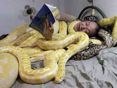 Zoo owner Emmanuel Tangco reads a book to his snakes in his bedroom in Malabon, Metro Manila. The Lunar New Year begins on February 10 this year and marks the start of the Year of the Snake. Serpent Animal, Green Anaconda, Burmese Python, Year Of The Snake, Pet Snake, Snake Art, Reptiles And Amphibians, My Buddy, Crazy People