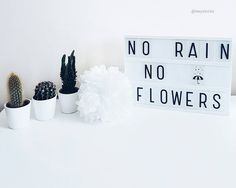 Lightbox Quotes, Licht Box, Light Board, No Rain No Flowers, Boxing Quotes, Light Letters, Message Board, Board Ideas, Garlands