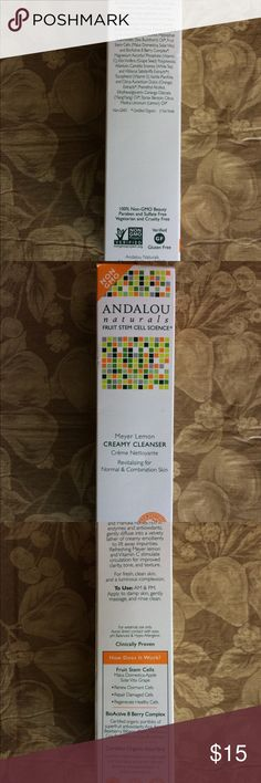 Andalou Naturals creamy cleanser Meyer lemon brightening cleanser new in box. Andalou Naturals Other