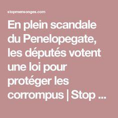 En plein scandale du Penelopegate, les députés votent une loi pour protéger les corrompus | Stop Mensonges