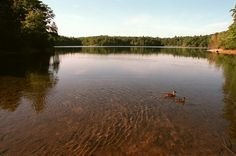 A literary road trip through New England - Henry David Thoreau's Cabin and Walden Pond
