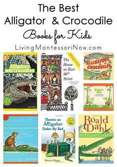 Animal fantasy books for elementary students