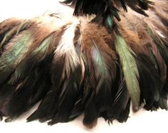 natural black  rooster tail feathers , bulk, lot, wholesale, feather supply, hair extensions, long feather