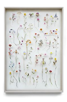 Anna Sheffield / Wildly Obsessed The magically inventive'Flower...