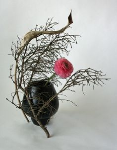 Ranunculus with Dried Leaf and Branches