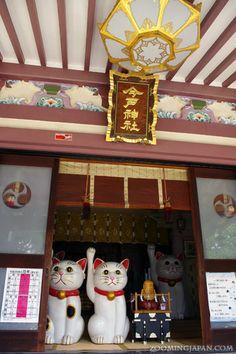 Imado Shrine - a cat shrine in Asakusa, Tokyo.