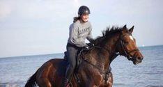 EQWO #Glücksmomente, 06. Dezember   Hannah Traussnig  #glücksmoment #adventkalender #pferdeliebe #pferd #pferdefotografie Horses, Animals, December, World, Animais, Animales, Animaux, Animal, Horse