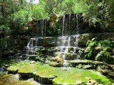 Waterfall - near the location of dinosaur tracks prehistoric garden in Zilker Botanical Garden in central Austin TX - SoloTripsAndTips.com