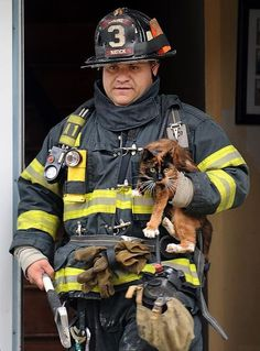 Firefighter Rescues Cat from Burning Home