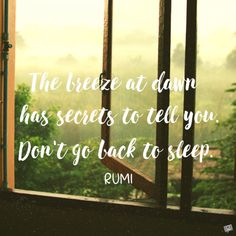 The breeze at dawn has secrets to tell you. Don't go back to sleep.