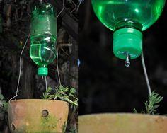 Self watering plastic bottl