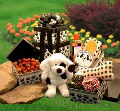 Patches' Doggie Tower Pet Gift Basket *** Continue to the product at the image link. (This is an affiliate link and I receive a commission for the sales)
