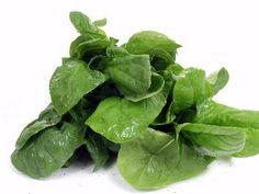 Dietas para H. pylori & úlceras