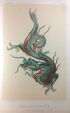 Japanese dragon tattoo design from Joest, 1887