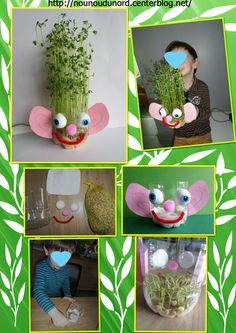 Lentil sprout in a bottle made by Gaspard - Daniel Messer All About Me Preschool, Preschool Art, Science Experiments Kids, Science Projects, Pop Bottle Crafts, Planting A Rainbow, Diy For Kids, Crafts For Kids, Rainbow Crafts