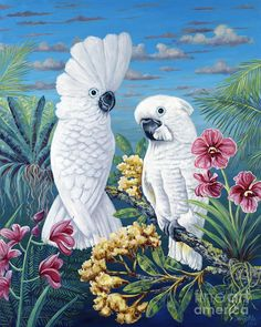 Parrot Painting - Paradise For Too by Danielle Perry Parrot Drawing, Parrot Painting, Fantasy Pictures, Tropical Art, Happy Paintings, Cockatoo, Bird Art, My Drawings, Watercolor Art