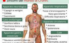 Estratto di Ganoderma per la malattia di Crohn La nostra amica Lucy dopo qualche mese di assenza pubblica sul suo blog uno studio scientifico ame ganoderma lucidum crohn