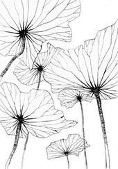 25 ideas flowers drawing doodles inspiration zentangle patterns drawing flowers is part of pencil-drawings - pencil-drawings Doodle Drawing, Doodle Art, Art Floral, Floral Design, Silk Painting, Painting & Drawing, Wall Drawing, Doodle Inspiration, Zentangle Patterns