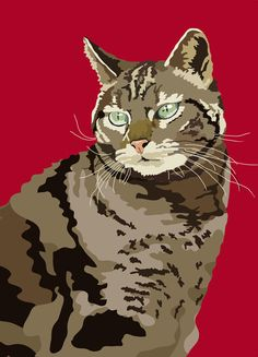Tabby Cat by animalsincolor on Etsy Sebastiano Ranchetti.