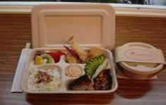 bamboo take out container - Google Search