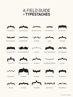 "A Field Guide to Typestaches by Tor Weeks. 18"" x 24"""
