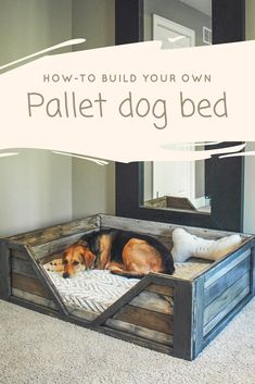 Pallet Projects Pallet Dog Bed: Discover how to build your own Pallet Dog Bed! This is a perfect weekend project and requires two to three - Pallet dog bed made from two repurposed pallets. Make your own pallet dog bed with this free PDF guide Diy Pallet Projects, Pallet Ideas, Wood Projects, Wooden Pallet Projects, Diy House Projects, Diy Lit, 1001 Palettes, Pallet Dog Beds, Dog Bed From Pallets