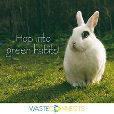 #BeGreen #GreenHabits #BeProActive #HealthyEnvironment #GreenAndHappy   Join ‪#‎WasteConnects‬ for great ideas on how you can 'Join the Revolution and become the Solution' https://www.facebook.com/wasteconnects/