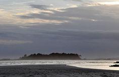 Tybee Mist - Tybee Island