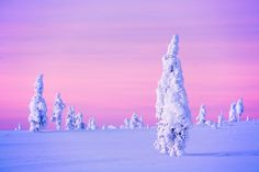 The Aurora season arrives at Kakslauttanen, Finland Fairy Tale Images, Greek Flowers, Winter Scenery, Winter Magic, Arctic Circle, Las Vegas Hotels, Winter Photos, Winter Beauty, Winter Landscape