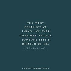The most destructive thing I've ever done was believe someone else's opinion of me. - Teal Blue Jay