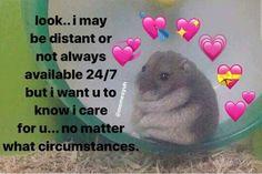 love memes for him . love memes for him relationships Memes Amor, Dankest Memes, Funny Memes, Dog Memes, Memes Lindos, Friendship Memes, Response Memes, Cute Love Memes, Memes About Love