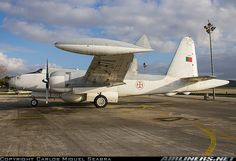 Lockheed P-2E Neptune aircraft picture West Wing, Postwar, Aircraft Pictures, Cold War, Gliders, Armed Forces, Military Aircraft, Portuguese, Air Force