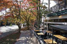 Gallery of Bakery & Restaurant SAWAMURA / Yuji Tanabe Architects - 13
