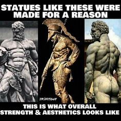 Statues of greek Gods #strenght #Aesthetics#statues#gym#lats#back#chest#aeera#dedication #physique #bodybuilding