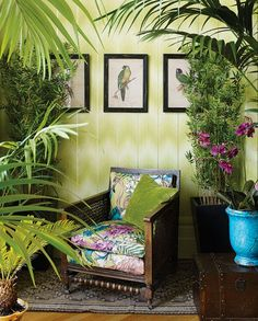 Cubana gul/grøn - tapet - m - fra Matthew Williamson Interior Tropical, Design Tropical, Tropical Home Decor, Tropical Houses, Tropical Colors, Hawaiian Home Decor, Tropical Furniture, Tropical Vibes, Tropical Paradise