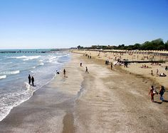 Lido Island near Venice, Italy.  I ran on this sandy beach at age 16 ...running from a couple Italian guys who must not have ever have seen a blonde blue eyed Dane before...ha ha ha