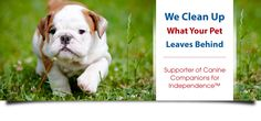 402-320-3824  cleanfeetpetcleanup@gmail.com  http://cleanfeetpetcleanup.com/dogs  #CleanFeetPetCleanUp
