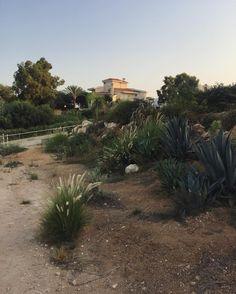 Marina Shtyk : Cyprus 2016