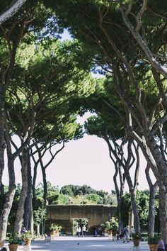 Giardino degli Aranchi | Rome