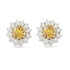 Bespoke | Jewellery | Design | Cape Town | South Africa - Uwe Koetter Yellow Diamonds, Cape Town South Africa, Bespoke Jewellery, Diamond Earrings, White Gold, Gems, Jewelry, Design, Jewlery