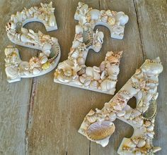 1000 images about shells on pinterest seashells shells - Things to do with seashells ...